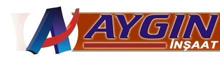 aygin11